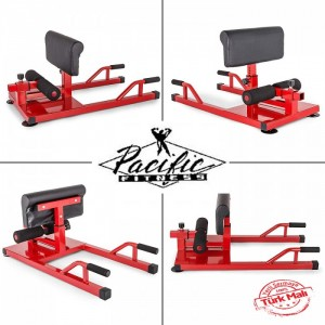 Pasifik Sissy Squat Machine