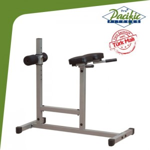 PASİFİK roman chair hyperextension bench